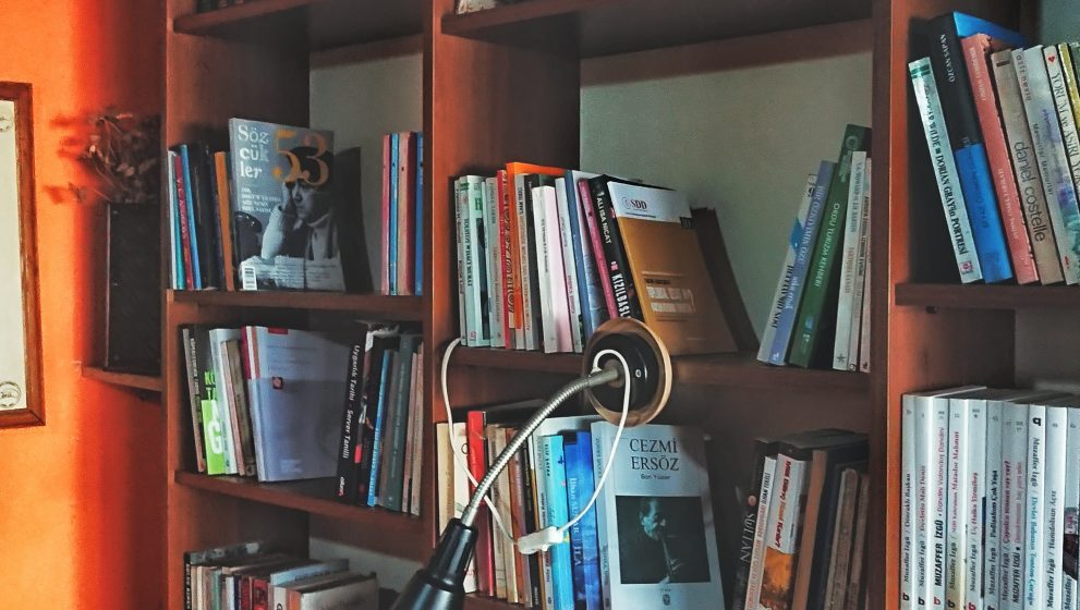 How To Choose The Perfect Bookcase